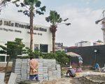 Ráo riết hoàn thiện cảnh quan 349 Vũ Tông Phan – chung cư giá rẻ
