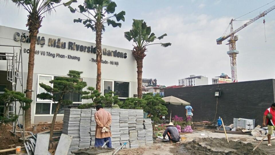 căn hộ mẫu 349 Vũ Tông Phan - chung cư giá rẻ hoàn thiện