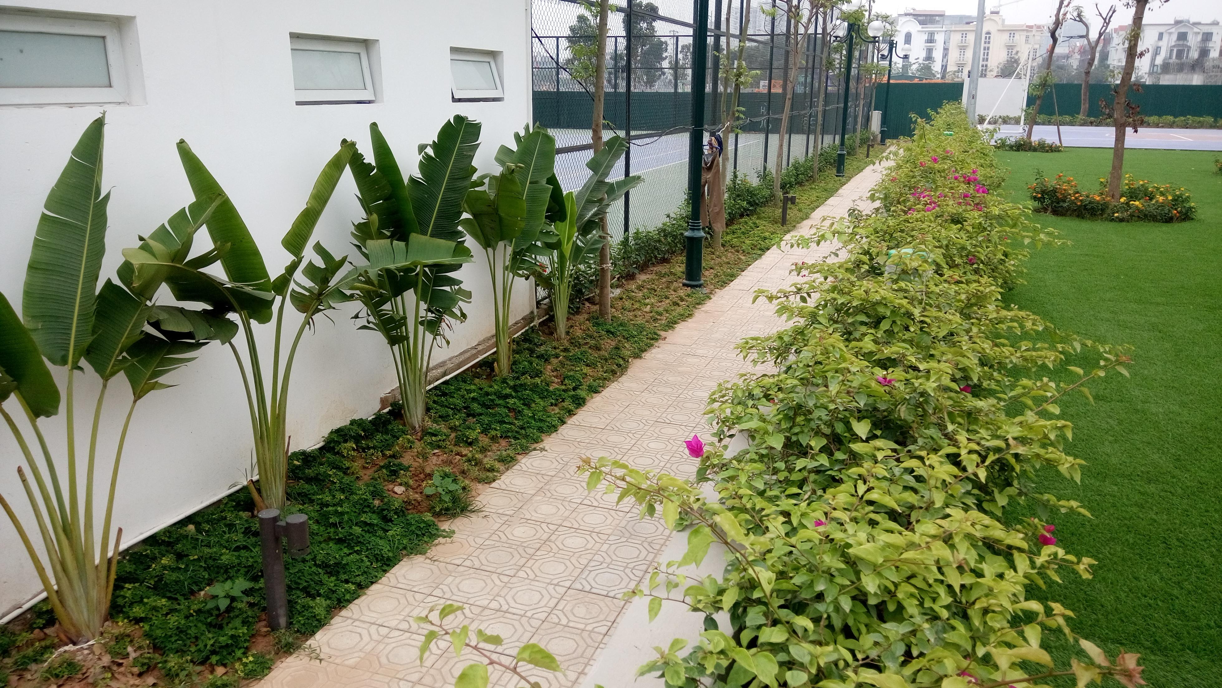 Sở hữu 18T2 Viethung Green Park là sở hữu không gian sống yên lành