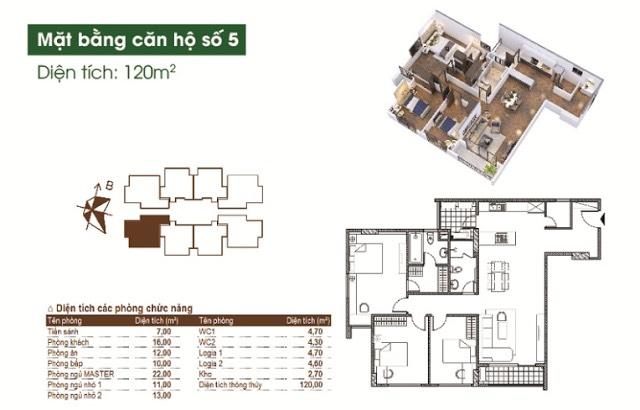 du-an-chung-cu-ct15-green-park-viet-hung-mat-bang-18t1-18t3-6