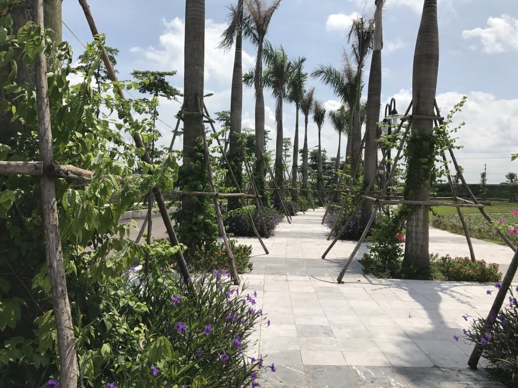 chung cư areca garden hạ tầng 4