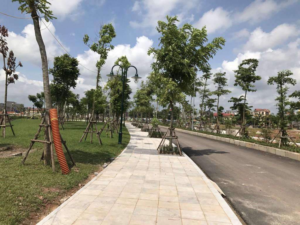 chung cư areca garden hạ tầng 1