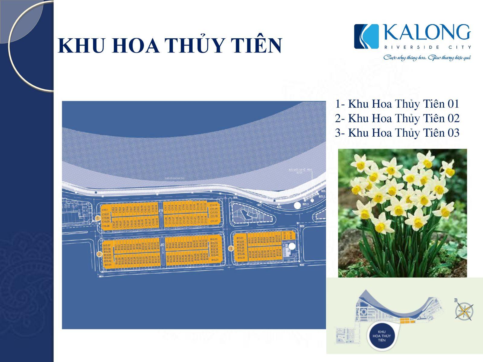 kalong riverside hoa thủy tiên