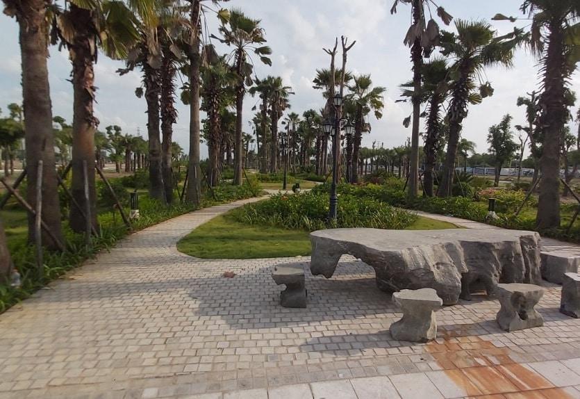 Cây xanh hoàn thiện trong Dự án Louis City tháng 10 năm 2020