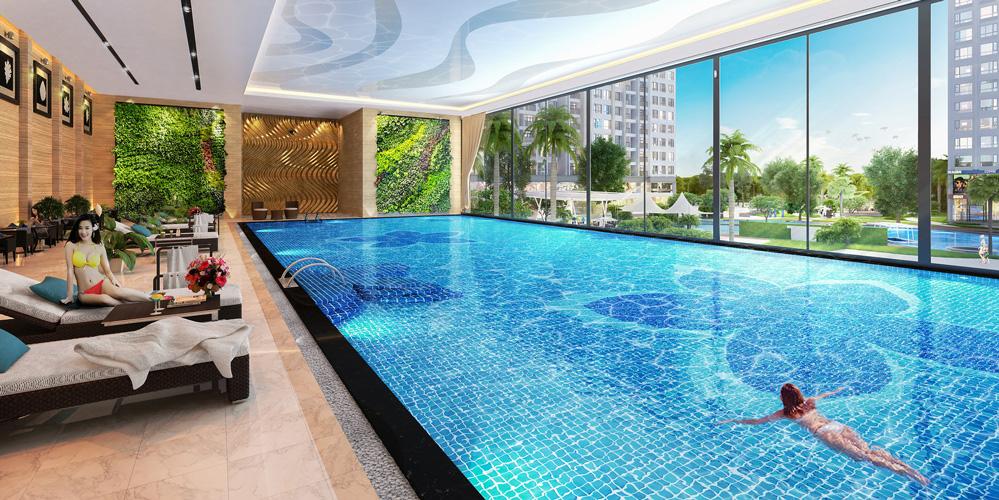 Bể bơi bốn mùa nội khu Chung cư N01 T6 N01 T7