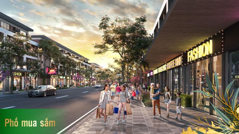 Tiện ích 5 sao Dự án TMS Vĩnh Yên Homes Wonder World - Phố mua sắm