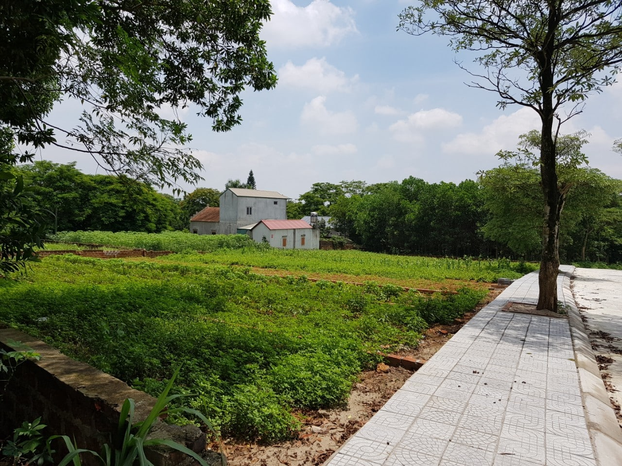 12 Lô Nhà vườn dự án Tái định cư Vai Réo Hòa Lạc diện tích 180m2 - 380m2