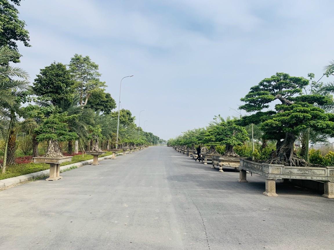 Đường đôi dọc Dự án 44m Từ Sơn Garden City đang mở bán 104 lô Đợt đầu